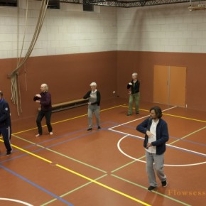 Tai Chi Haarlem - Flowsessions 16