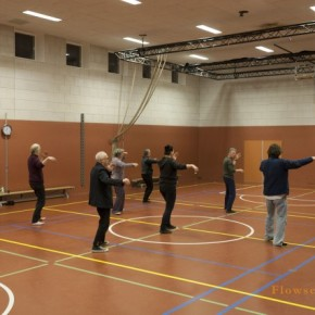 Tai Chi Haarlem - Flowsessions 17