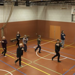 Tai Chi Haarlem - Flowsessions